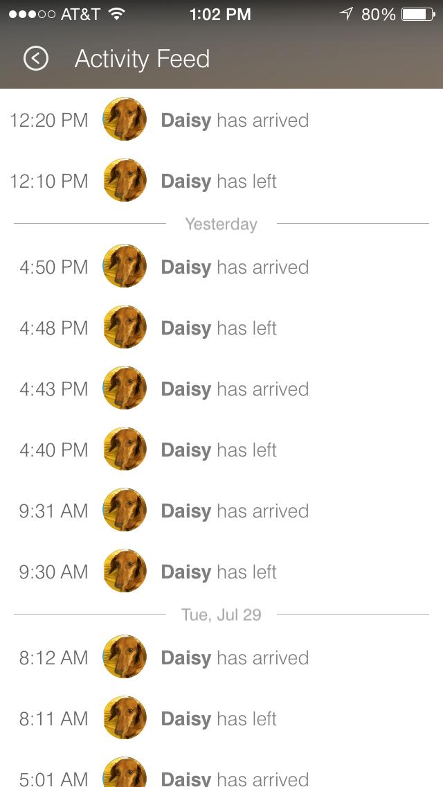 DaisySTlog