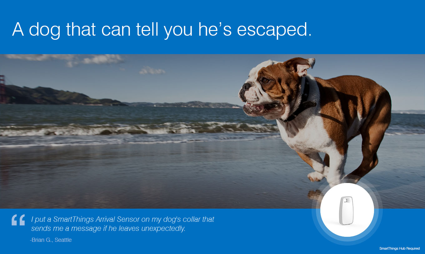 A dog that can tell you he's escaped